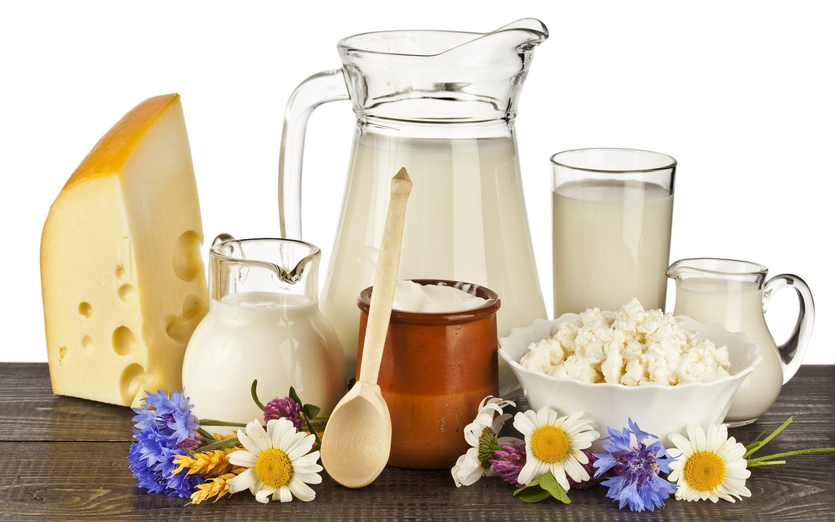 бизнес-план молочного завода