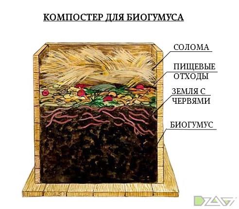 цех биогумуса