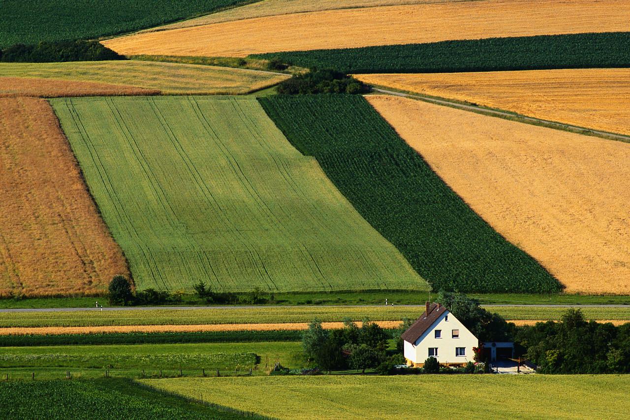 выращивание зерновых культур для откорма КРС бизнес-план