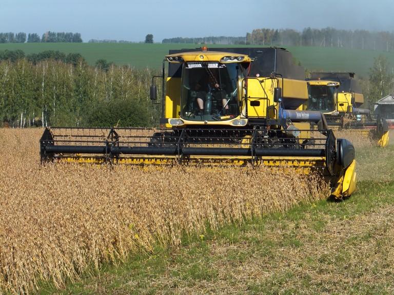 Готовый бизнес-план по выращиванию пшеницы и сои с зернохранилищем (с фин. расчетами) - 2017